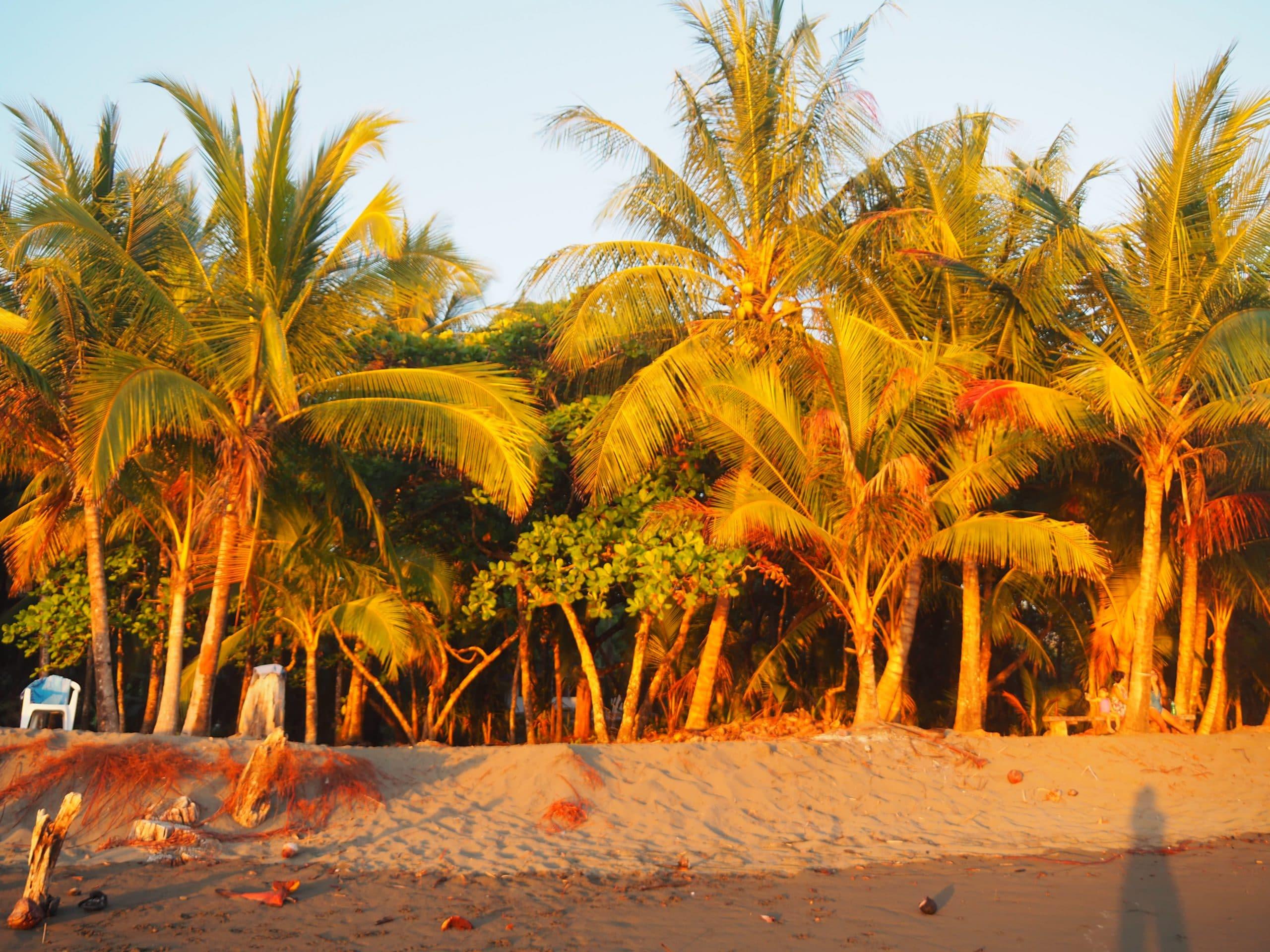 Costa Rica Paradis vert
