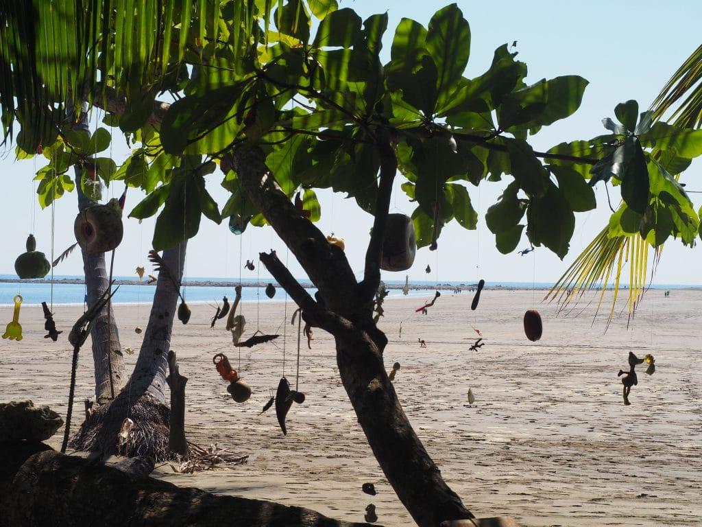 parc marino Ballena Costa Rica
