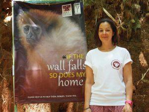 témoignage ecovolontaire gibbon