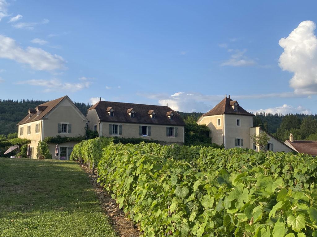L'hôtel SPA le Saint-Cirq et ses vignes