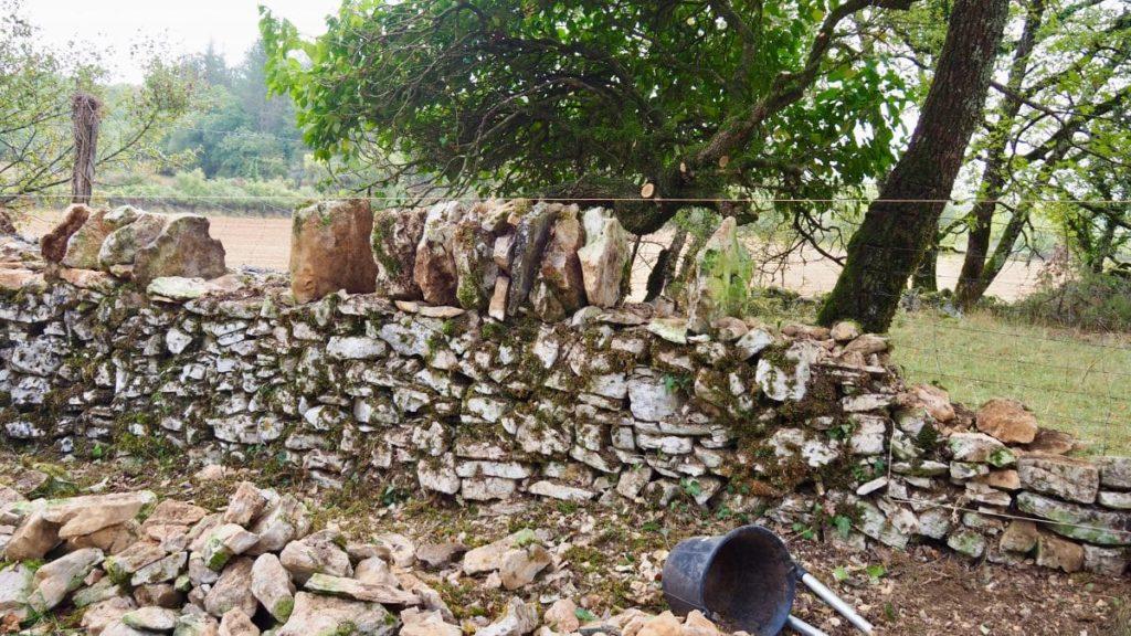 Restauration des murets en pierres sèches.